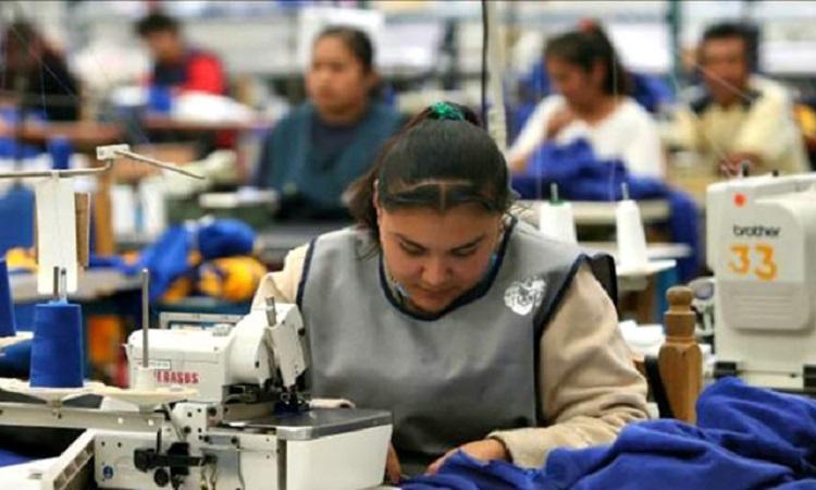 En México hay 51 millones de personas  empleadas: OCDE