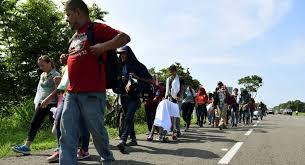 OCDE destaca la integración a la fuerza laboral de migrantes