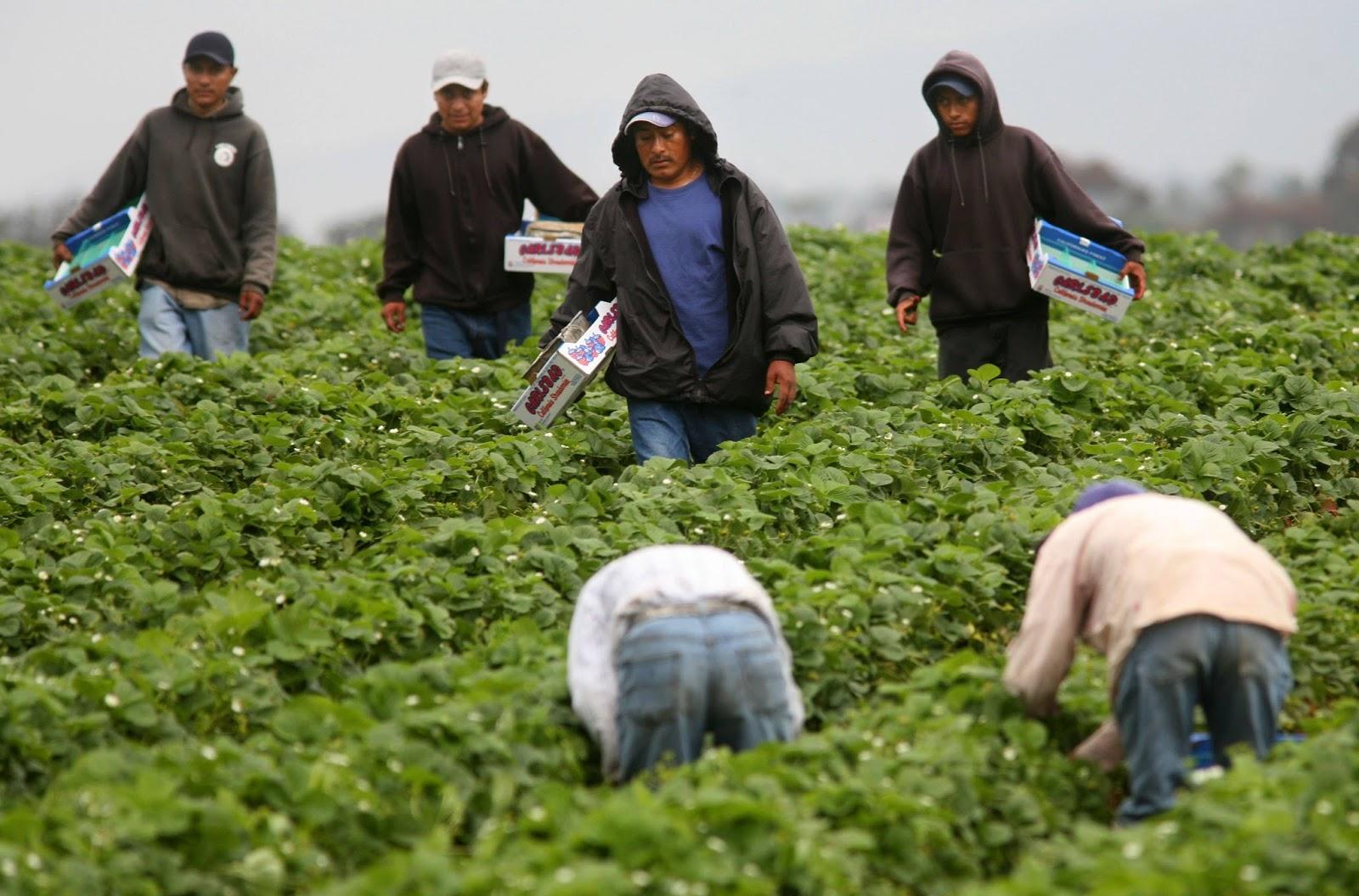 Fedecámaras: No hay condiciones para dialogar con el gobierno